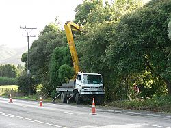 Roadside tree trimming near power line